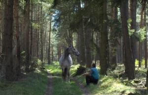 Pferd Reverie und Carsten gehen auf Waldweg spazieren - naprimo.de